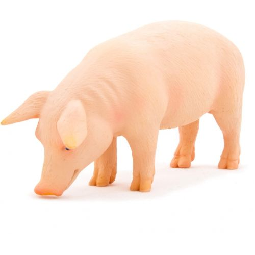 Animal Planet Cerdo