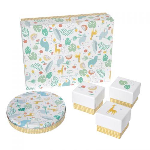 Baby Art Caja de Regalo Mis recuerdos - Diseño Tucanes