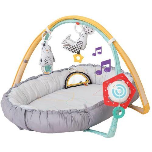 Gimnasio Musical Polo Norte , Taf Toys